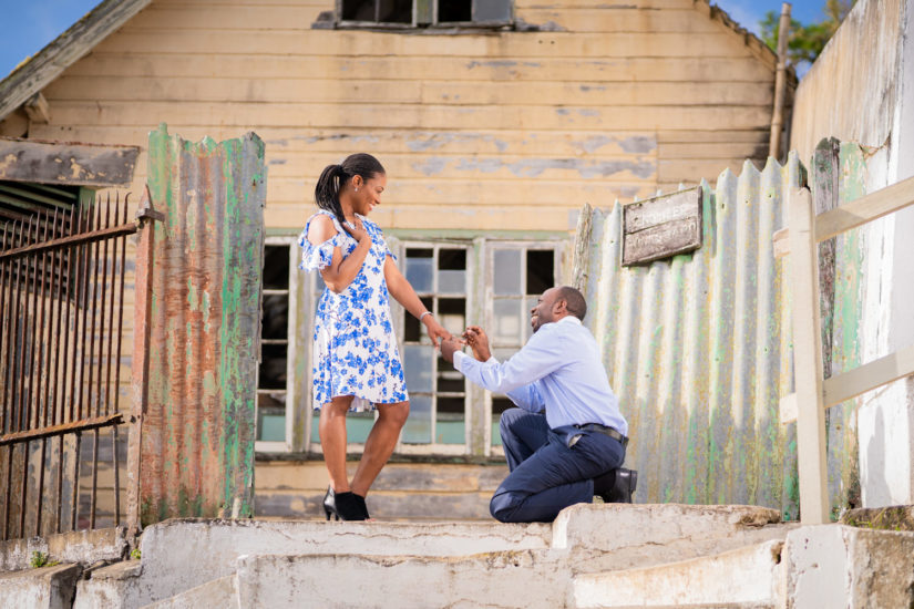 Kingston photographers, Fernandez